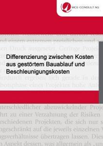 MCE-CONSULT AG - Differenzierung Kosten