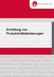 MCE-CONSULT-AG-Ermittlung-von-Produktivitätsänderungen.